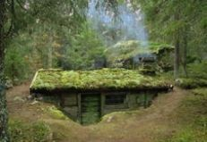 Primitive_Houses_and_Bushwak (14)
