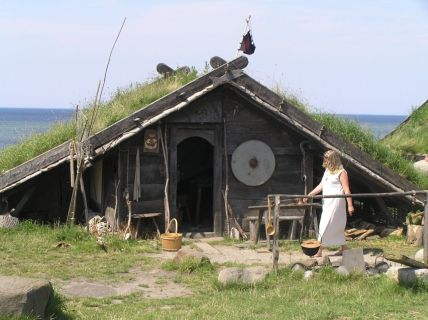 Primitive_Houses_and_Bushwak (88)