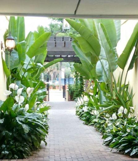 Fabulous-Tropical-Garden-Design-Ideas-That-You-Definitely-Like-22