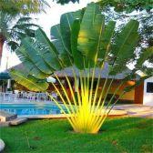 Fabulous-Tropical-Garden-Design-Ideas-That-You-Definitely-Like-25