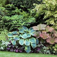 Guide: Foliage border; Apr'13; border at home garden of Stacie Crooks