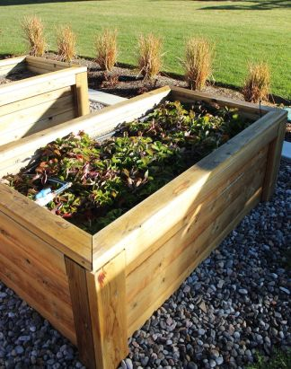 Build-a-raised-garden-bed