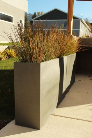 Install-low-maintenance-landscaping