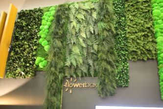 Naturalist-flower-box-wall-from-Flowerbox