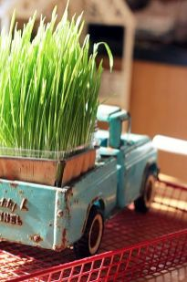 a-blue-vintage-truck-with-a-planter-with-wheatgrass-is-a-lovely-rustic-decoration-for-spring