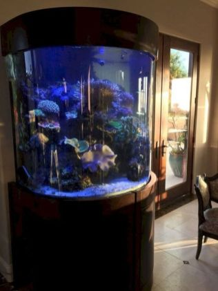 a-large-round-fish-tank-in-the-refined-space-will-make-it-more-living-less-formal-and-more-cool