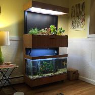 an-aquarium-with-lights-and-a-mini-indoor-garden-is-a-stylish-decoration-and-a-living-nook-in-your-home