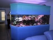 aquariums-in-interiors-16-554x415