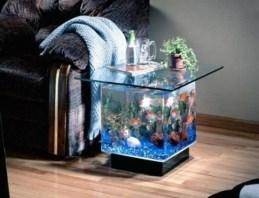 aquariums-in-interiors-51-554x425