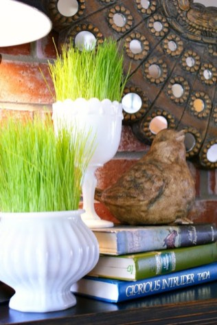 fresh-wheatgrass-decor-ideas-to-try-in-spring-17
