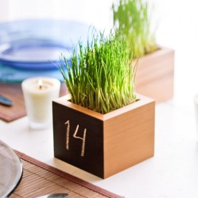 fresh-wheatgrass-decor-ideas-to-try-in-spring-24-554x554