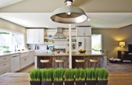 fresh-wheatgrass-decor-ideas-to-try-in-spring-4-554x357
