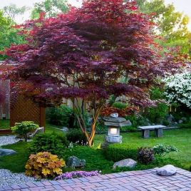 grass-shrubs-bold-blooms-and-a-red-maple-a-stone-lantern-plus-a-stone-bench-for-a-bold-modern-Japanese-front-yard