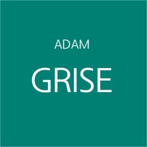 Adam Grise