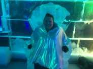 Sitting in the ice thrown