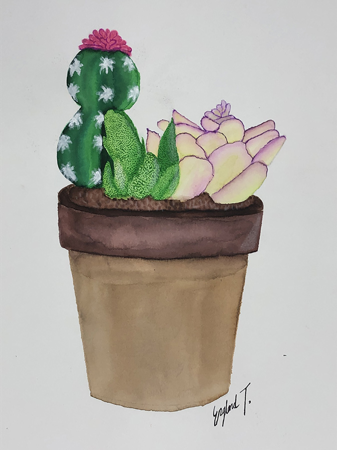 Evolution of a Cactus Watercolor