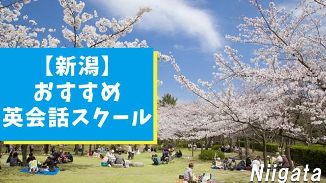 新潟の本当におすすめできる英会話スクール【10選】特徴別にまとめ