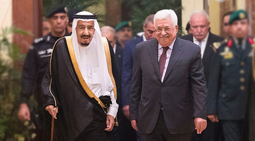 Fmr Bibi Adviser: Saudis «Don't Care» About Palestinians, Want «Israel'» Help with Iran