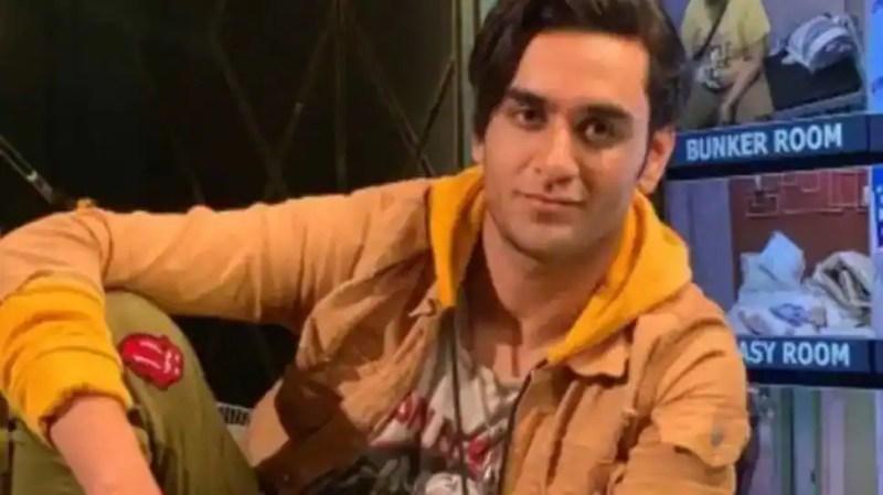 Bigg Boss 14 fame Vikas Gupta opens up on his family's reaction to his bisexuality, reveals he dated Pratyusha Banerjee