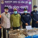Head, skins of deer recovered in Barguna