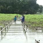 Flood worsens in Kurigram, thousands marooned, cooked food needed