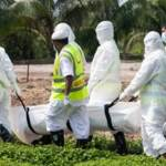 34 more deaths from coronavirus in 24hrs