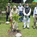 PM reiterates goal of raising country's forest coverage to 25pc