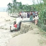 EU gives €1 million for Bangladesh flood victims