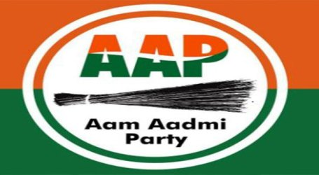 Delhi BJP to run 'Jan Andolan' to expose failures of Kejriwal Govt