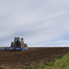 חקלאות ישראלית – תנאי לביטחון תזונתי לאומי כיום ובעתיד