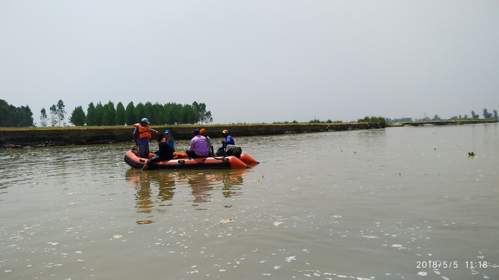 Spotting the elusive Indus river dolphin WWF India team during the survey WWF India