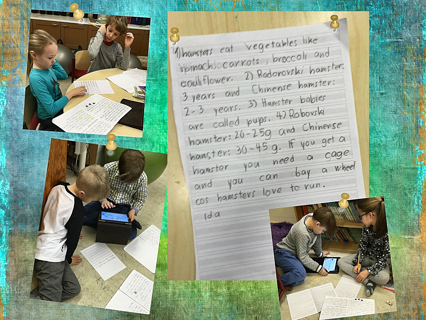 Researching And Writing A Basic Report In Second Grade English Classes At Cygnaeus School