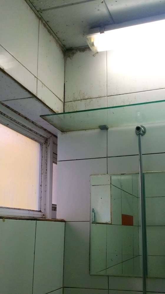 Mold has collected on the walls and ceiling of a communal bathroom in 1st Shimjeon Hall, Kangnam University. (Photo: Velislava Aleksieva)