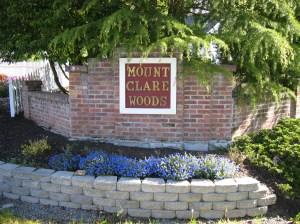 Mount Clare Woods