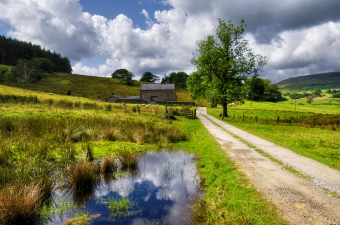 A view of a beautiful countryside path in the forest of Bowland in Lancashire