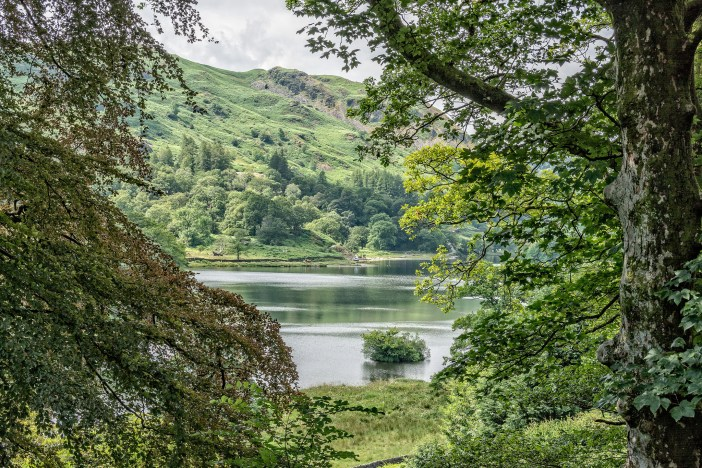 Rydal Water from the garden at Rydal Mount / CC 2.0 David Nicholls