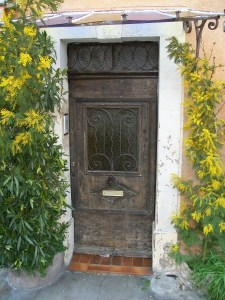 Old French Door with Mimosa