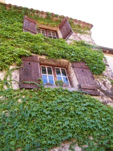 Windows on a French Home
