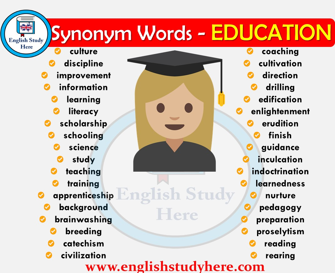Education Synonyms Words