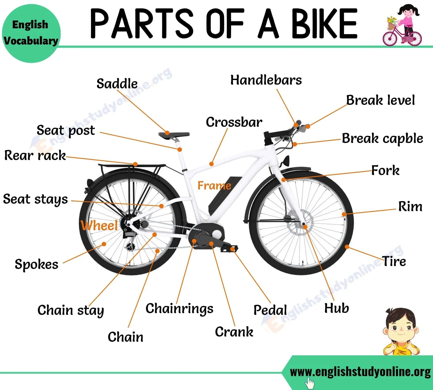 Bike Parts Different Parts Of A Bike With Interesting Esl