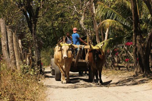 gallery-northern-nicaragua-lifestyle-7