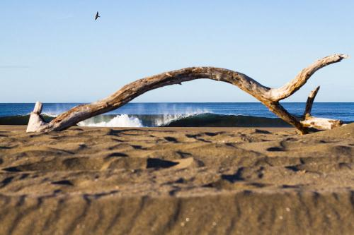 gallery-northern-nicaragua-waves-9