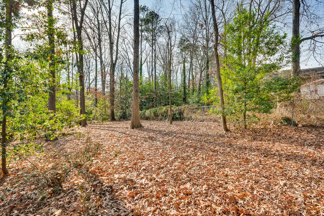 2548 Midvale Forest Drive-small-035-35-Back Yard-666x445-72dpi