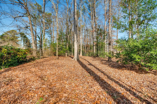 2548 Midvale Forest Drive-small-036-39-Back Yard-666x445-72dpi