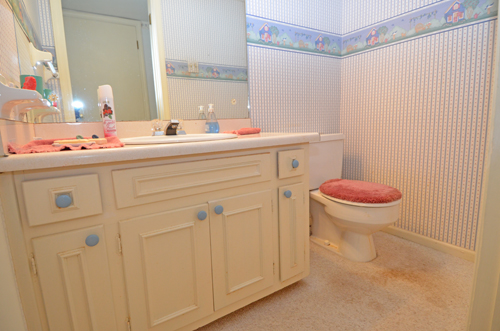 3718 Northbrook Court Atlanta GA 30340 19 Powder Bath