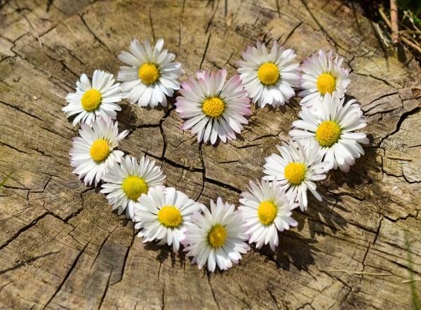 Сърце от цветя