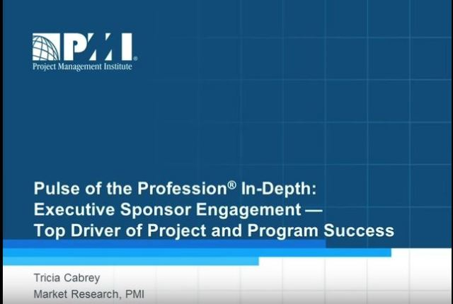 See video from PMI about Pulse of Profession findings on executive sponsors