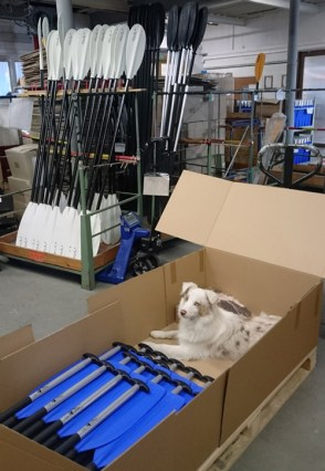 Final pre-shipment inspection can´t be underestimated when packaging goods!