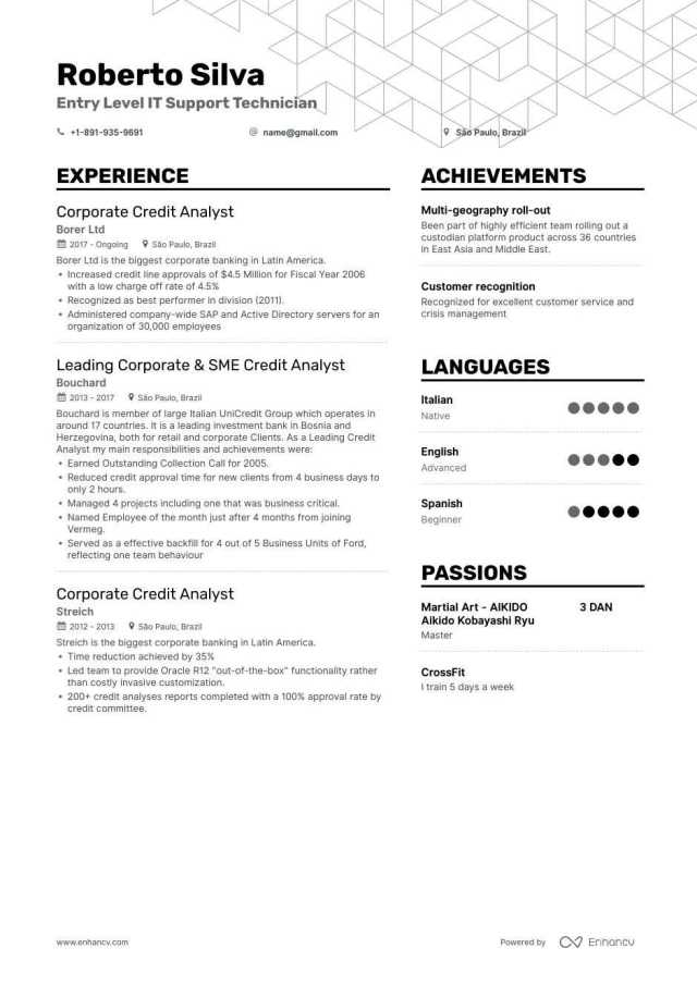 Entry Level IT Resume Samples  Information Technology Resume Examples