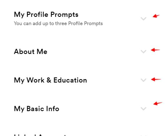 deatiled steps to add filters and profile prompts on Bumble